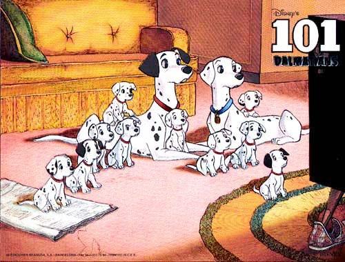 101 Dalmatiner Bild