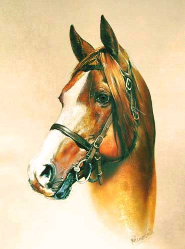 Horse`s Head by Greensmith