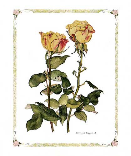 Gelbe Rosen, Cappello- Kunstdruck 20x25
