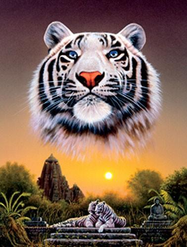White Tiger Sunset