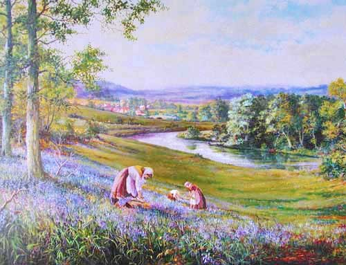 Bluebell View by Colin Vokes