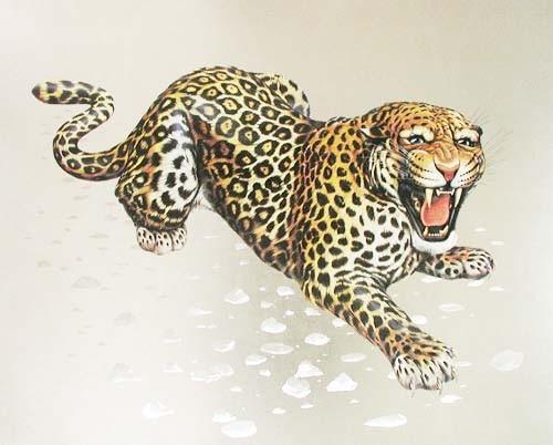 Leopard Aluminium Druck