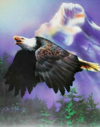 Seeadler im Flug Poster