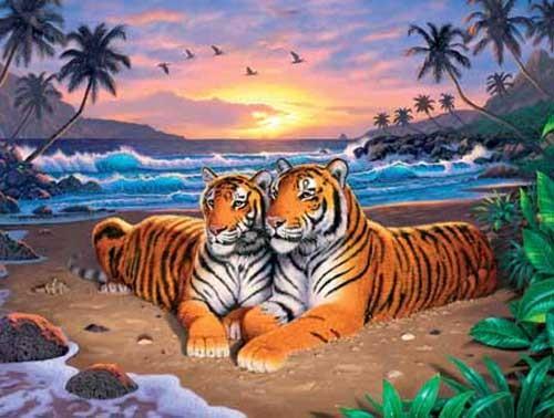 Beach Tigers