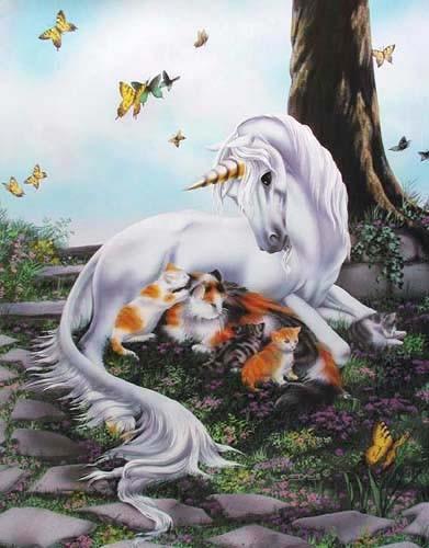 Liegendes Einhorn und Katzen Poster