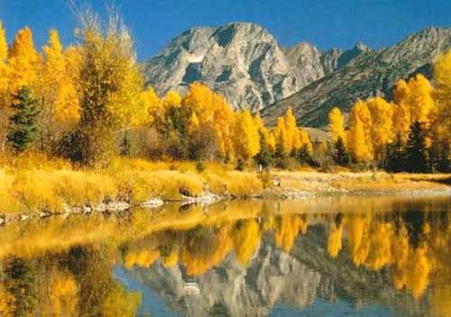 Herbstlandschaft Poster 40x50