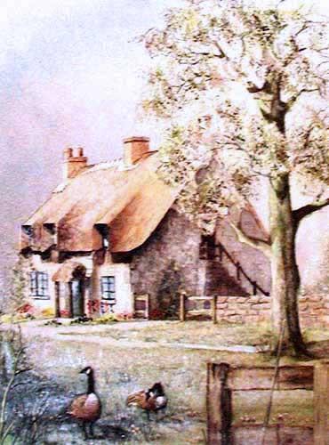 Bauernhaus und Gänse