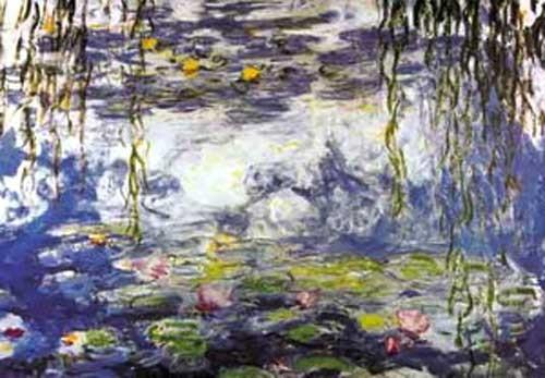 Wasserlilien *