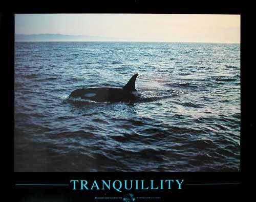 Tranquillity