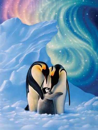 Pinguine, Dear Little One by Kirk Reinert