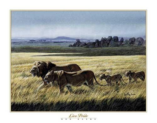 Löwen, Don Balke