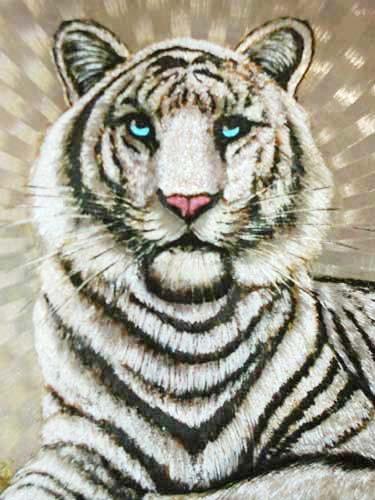 Weißer Tiger Portrait Alu Bild 16x21