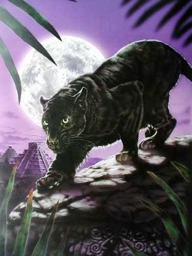 Schwarzer Panther by David Penfound
