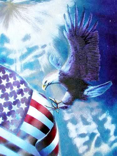 Seeadler und USA Fahne II Alu Bild