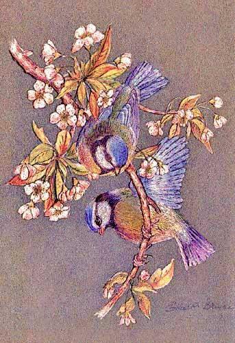 Vögel by Ella R. Bruce
