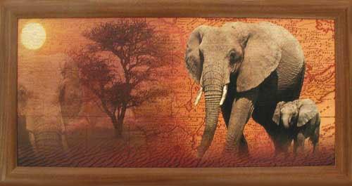 Elefanten mit Landkarte- Wandbild