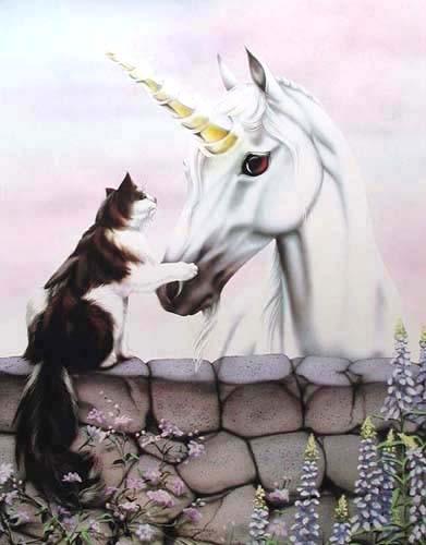 Katze und Einhorn Poster 40x50