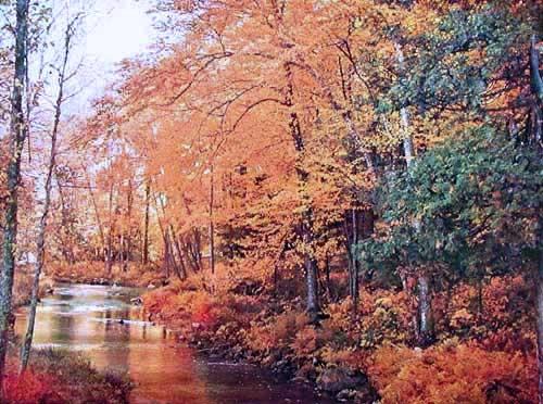 Herbst Landschaft mit Fluss Bild