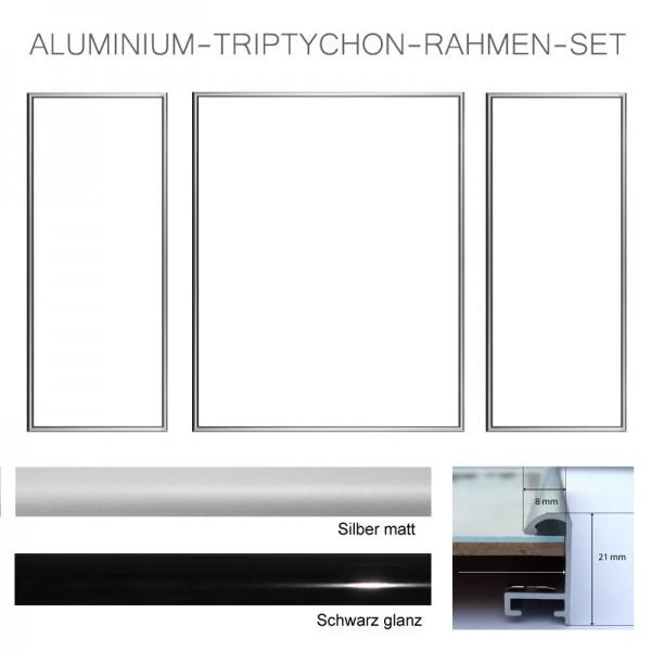 Aluminium Bilderrahmen Triptychon in Silber matt und Schwarz