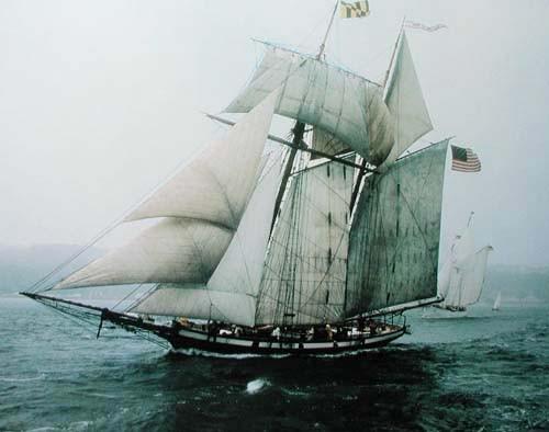 Segelschiff, Klipper Pride of Baltimore - Poster