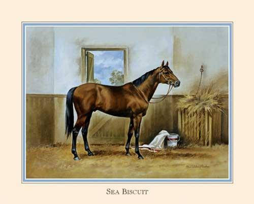 Pferd, Sea Biscuit II