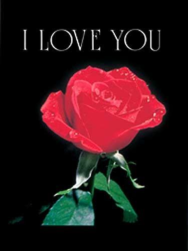 Rote Rose - Ich liebe dich - Alubild