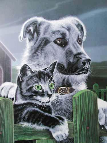 Hund und Katze am Zaun by H.Villieres