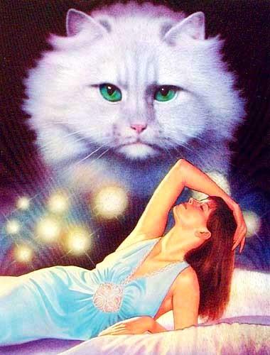 Weiße Katze Fantasy