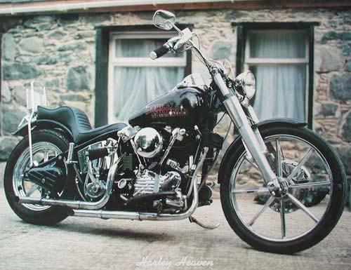Harley Heaven