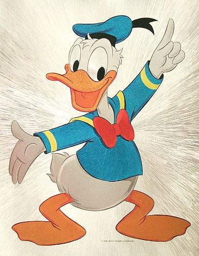 Donald Duck Bild