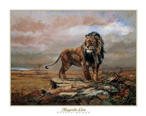 Löwe, Magestic Lion