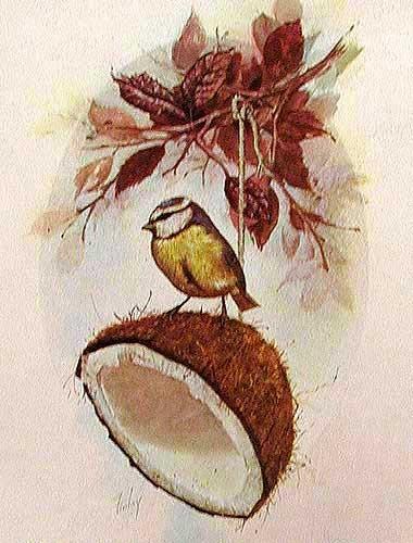 Vogel und Kokosnuß silber