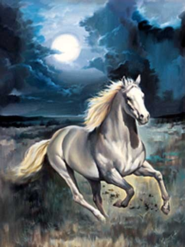 Moon Horse by L. Bargallo