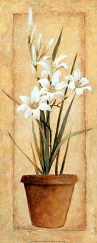 Delicate Lilies Kunstdruck 20x50 cm