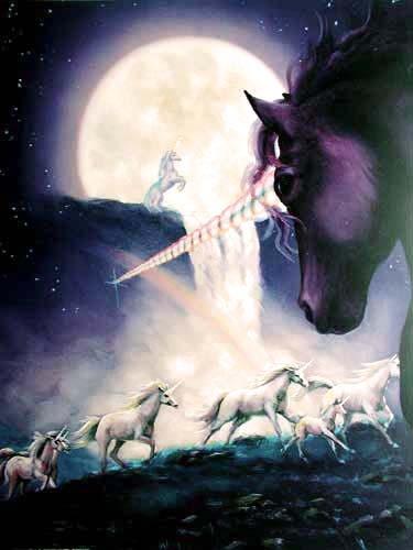 Einhörner Fantasie Poster