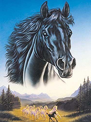 Black Horse & Herd