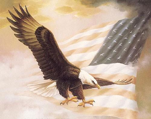 Weißkopfadler und USA Fahne Poster