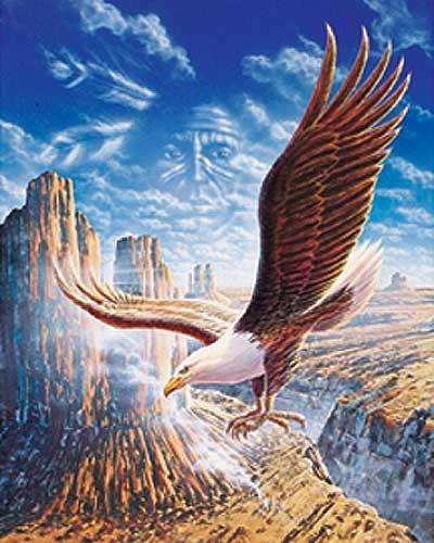 Weißkopfseeadler und Indianer Bild