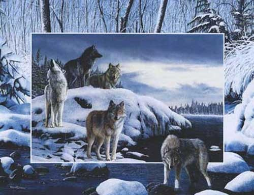 Wölfe am Fluss von Daniel