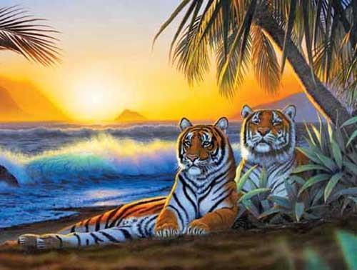 Tropica Tigers