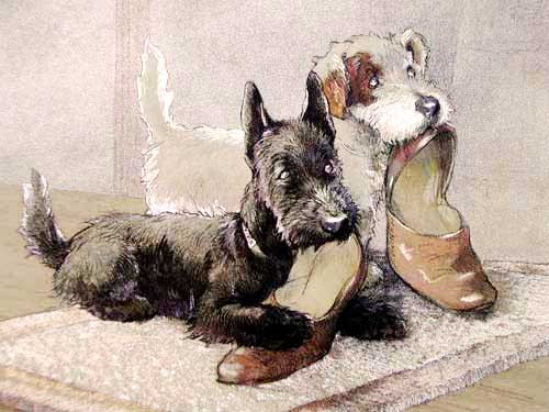 Puppies and Shoes