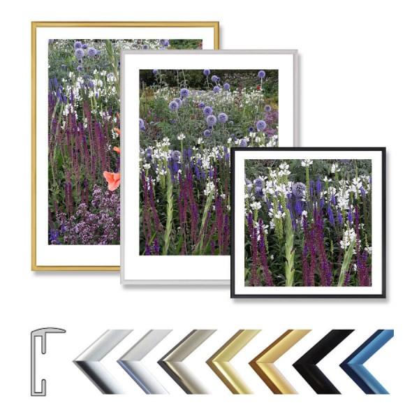 Aluminium Bilderrahmen 60 x 70 cm mit Acrylglas, schmale Leiste in 7 Farben