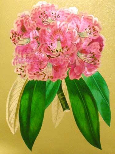 Rhododendron Blume Bild