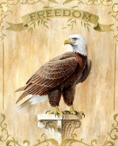 Adler Freiheit Kunstdruck