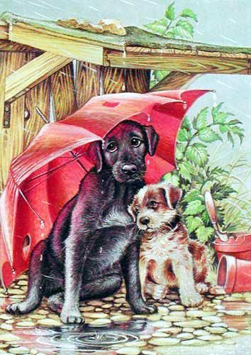 Kleine Hunde unter Regenschirm Postkarte
