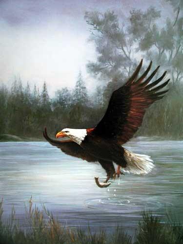 Seeadler beim Fischfang Poster 40x50