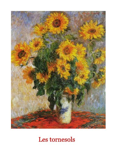 Les Tornesols, Sonnenblumen