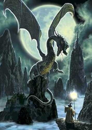 Drache und Zauberer Poster 62x90