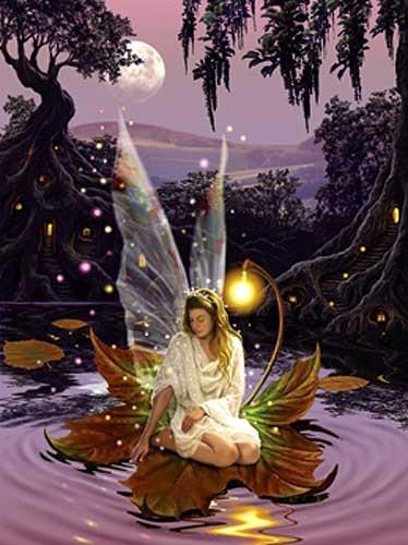 Fairy Princess Alu Bild