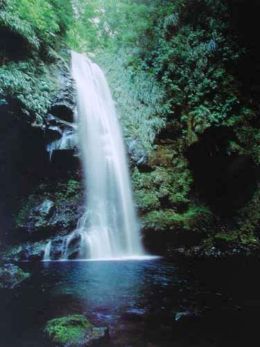 Wasserfall fließt in den See Poster